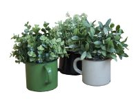 Plant in emaille pot